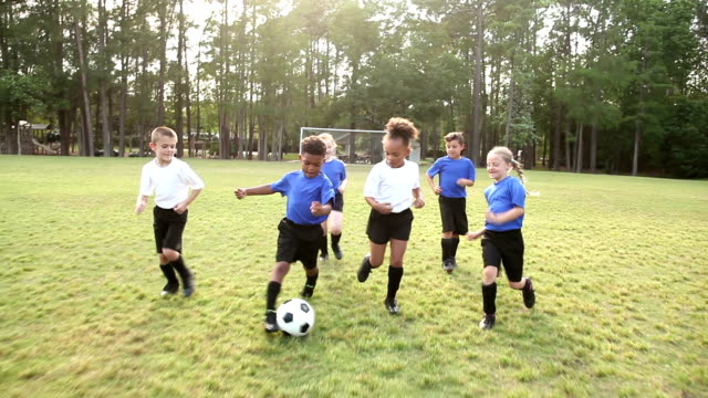 multi-ethnic children playing soccer - 6 7 years stock videos & royalty-free footage