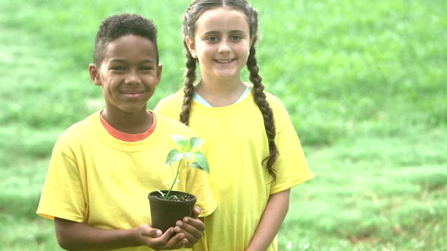multi-ethnic children with potted plant for the garden - pot plant stock videos and b-roll footage