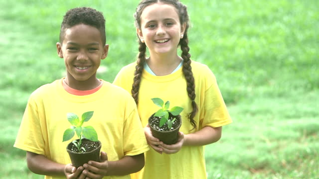 multi-ethnic children with potted plants for the garden - pot plant stock videos & royalty-free footage