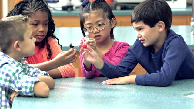 multi-ethnic elementary school children in science class - primary school child stock videos & royalty-free footage
