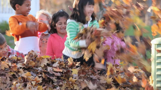 ms pan multi-ethnic group of children playing in pile of leaves in back yard / richmond, virginia, usa - 2 3 år bildbanksvideor och videomaterial från bakom kulisserna