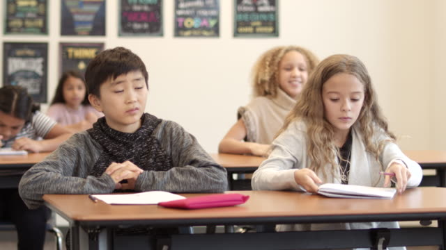 a multi-ethnic group of elementary aged students in a classroom - learning disability stock videos & royalty-free footage