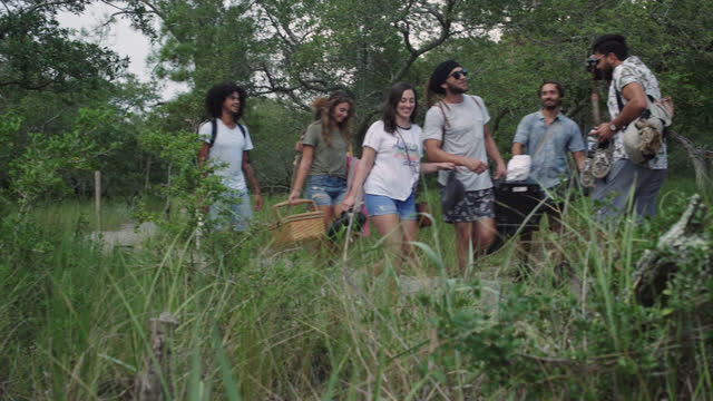 a multi-ethnic group of friends hike through the woods to go to on a picnic - friendship stock videos & royalty-free footage