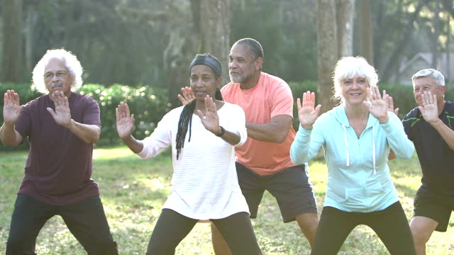 vídeos de stock e filmes b-roll de multi-ethnic group of seniors doing tai chi in park - imagem