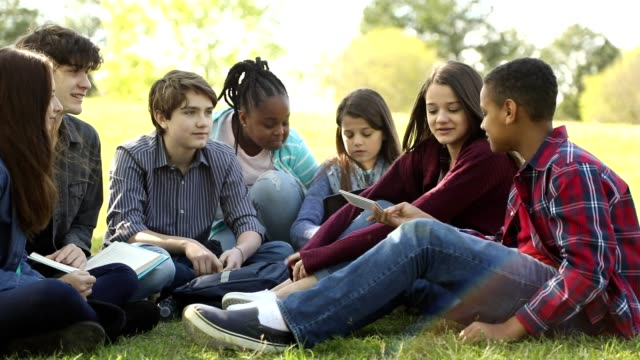 multi-ethnic group of teenagers at park with friends. - leisure activity stock videos & royalty-free footage