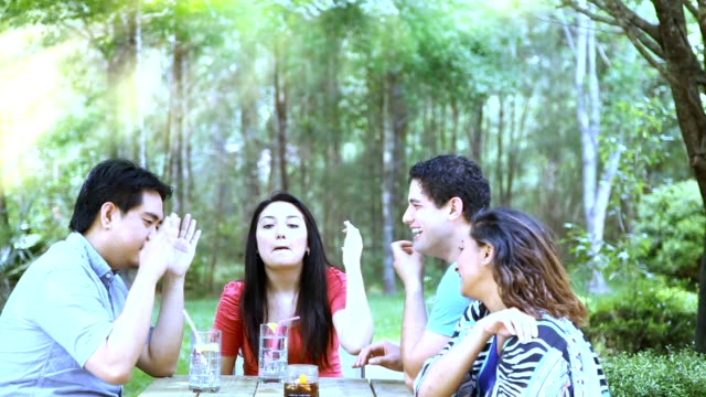 Multi-ethnic group of young adult friends enjoy park outdoors.