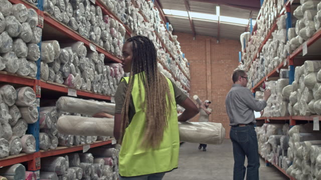 multi-ethnic group working at warehouse - locs hairstyle stock videos & royalty-free footage