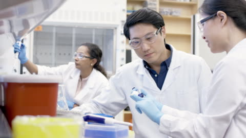 multi-ethnic team of chemists working in laboratory - showing stock videos & royalty-free footage