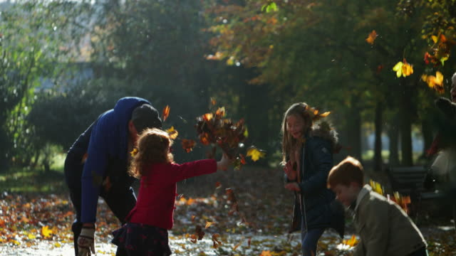 multi-gen family playing at the park - autumn stock videos & royalty-free footage