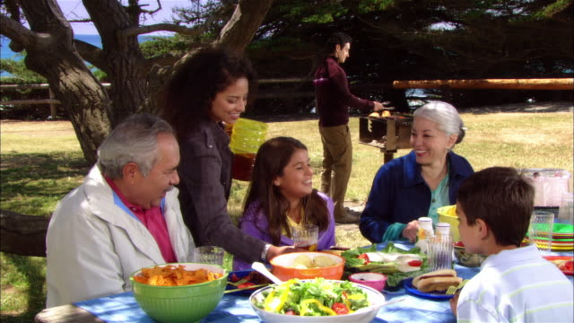 vídeos de stock e filmes b-roll de ms, multi-generational family having picnic in leffingwell park, cambria, california, usa - picnic