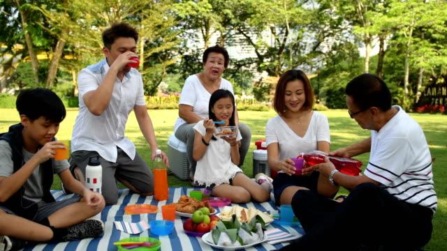 vídeos de stock, filmes e b-roll de família multi-geracional, um piquenique em um parque - refresco