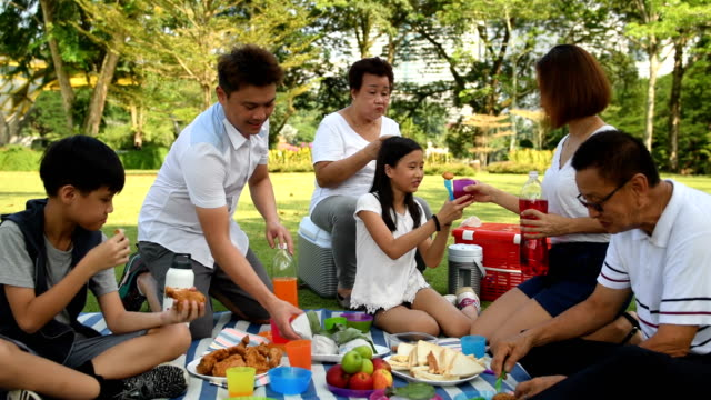 multi-generational family picnicking in a park - east asian ethnicity stock videos & royalty-free footage