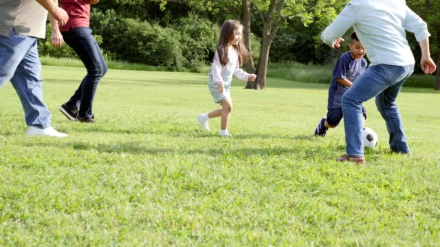 multi-generational family plays soccer at family reunion - public park stock videos & royalty-free footage
