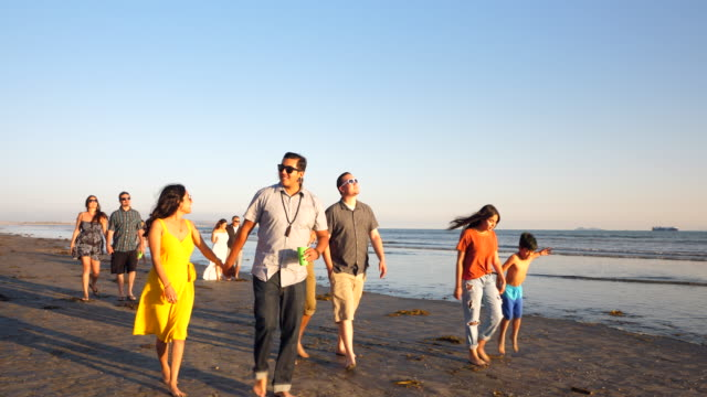 ms multigenerational family walking together on beach at sunset - 35 39 years stock videos & royalty-free footage