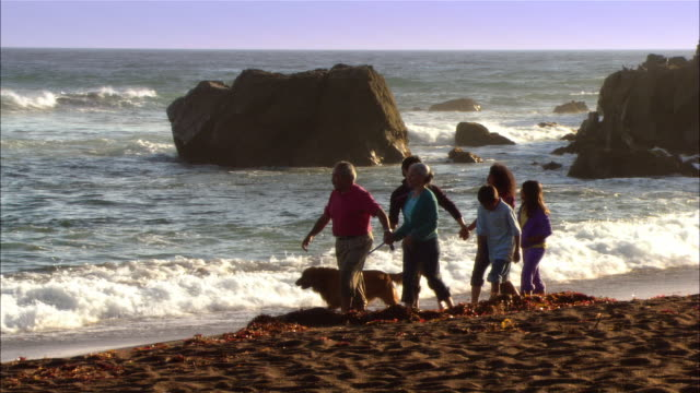 ms, pan, multi-generational family with dog walking in moonstone beach, cambria, california, usa - dog walking stock videos & royalty-free footage