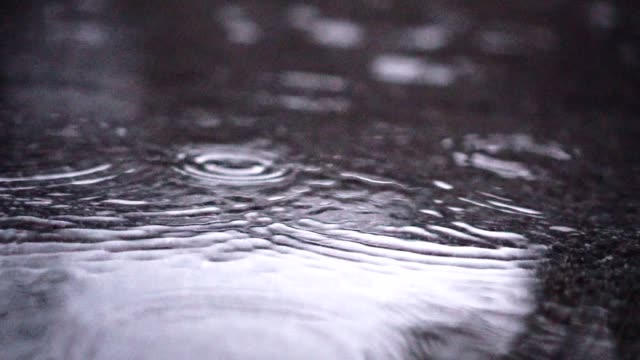 slo mo multiple drops falling into puddle - grey colour stock videos & royalty-free footage