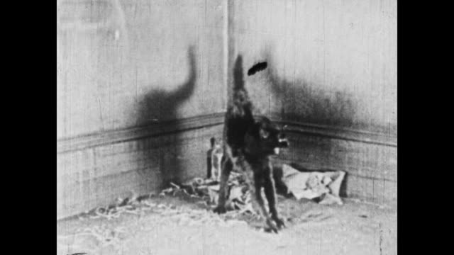 vídeos y material grabado en eventos de stock de 1926 multiple santas make their way through a building - 1926