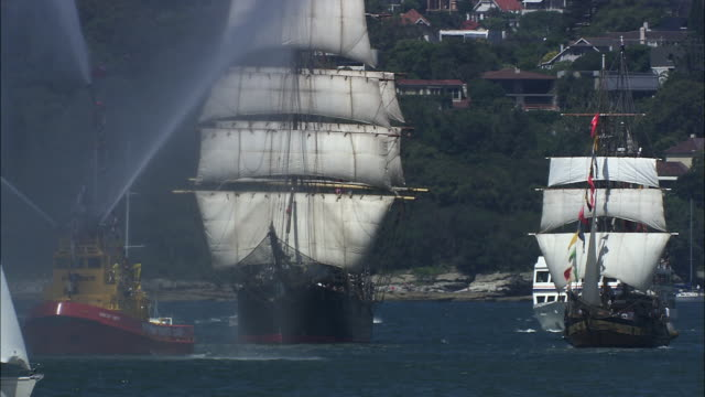 ms multiple tall ships and sailboats in sydney harbor on australia day, sydney, new south wales, australia - regatta stock-videos und b-roll-filmmaterial