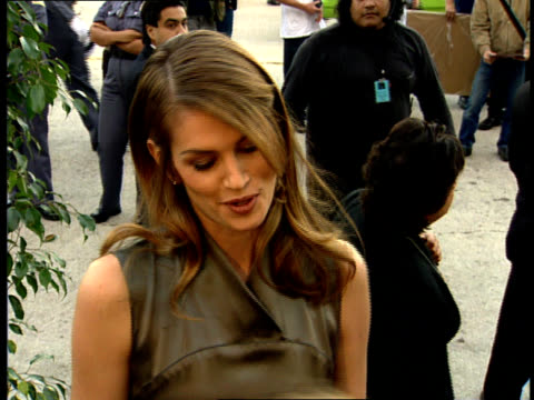 multiple - cindy crawford stock videos & royalty-free footage