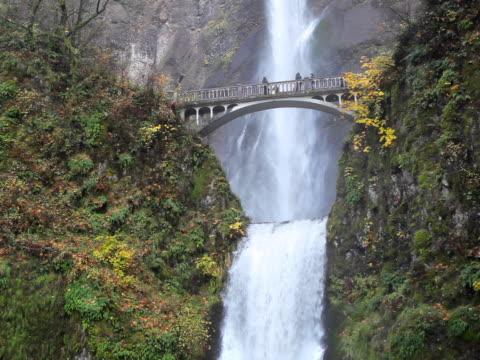 multnomah falls in oregon - columbia river gorge stock videos & royalty-free footage