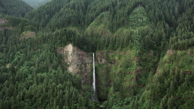 vídeos y material grabado en eventos de stock de aéreas caídas de multnomah en oregon - cascadas de multnomah