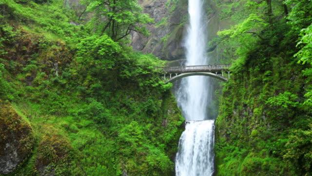 モルトノマ滝のコロンビア川渓谷、オレゴン州、アメリカ) - オレゴン州点の映像素材/bロール