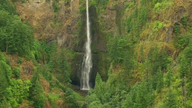 vídeos y material grabado en eventos de stock de ms aerial multnomah falls / oregon, united states - cascadas de multnomah