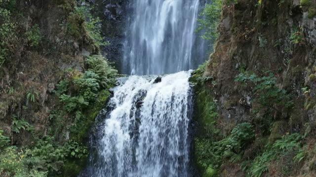 multnomah falls, oregon - columbia river gorge stock videos & royalty-free footage