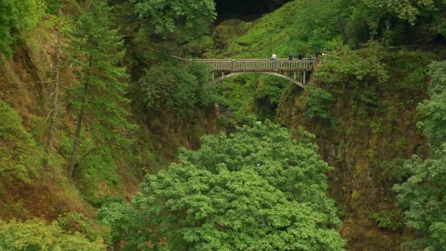 vídeos y material grabado en eventos de stock de ms aerial multnomah falls to reveal lower falls footbridge and upper falls / oregon, united states - cascadas de multnomah