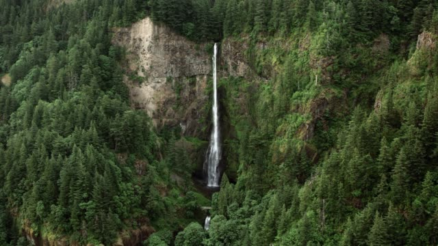 aerial multnomah falls - lush video stock e b–roll