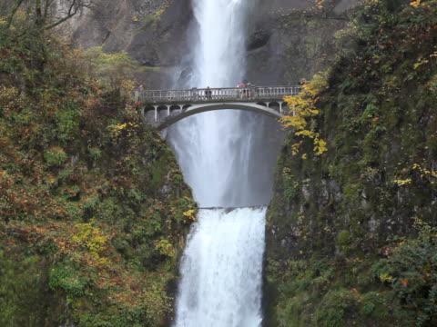 vídeos y material grabado en eventos de stock de pal multnomah falls cascada en oregon nosotros - cascadas de multnomah