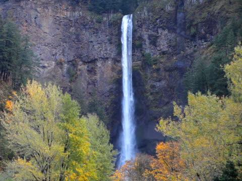 pal multnomah falls waterfall in oregon usa - multnomah falls stock videos & royalty-free footage