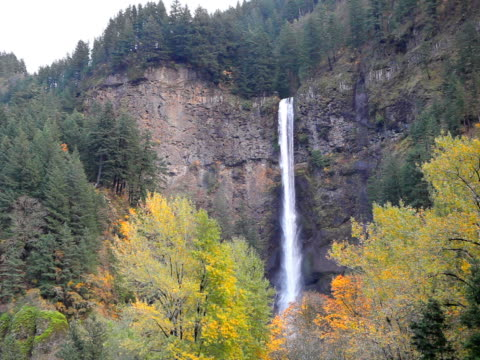 pal multnomah falls waterfall in oregon usa - portland oregon fall stock videos & royalty-free footage