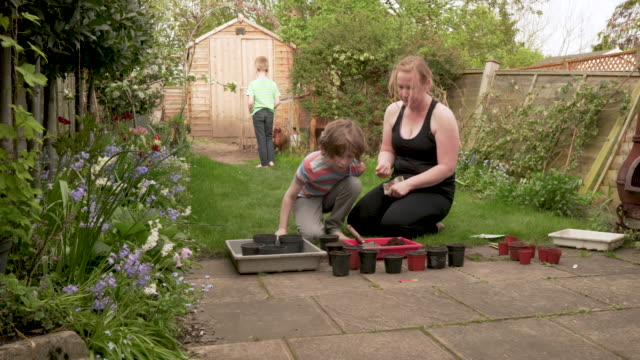 a mum helping her young son plant seeds - environmental issues stock videos & royalty-free footage