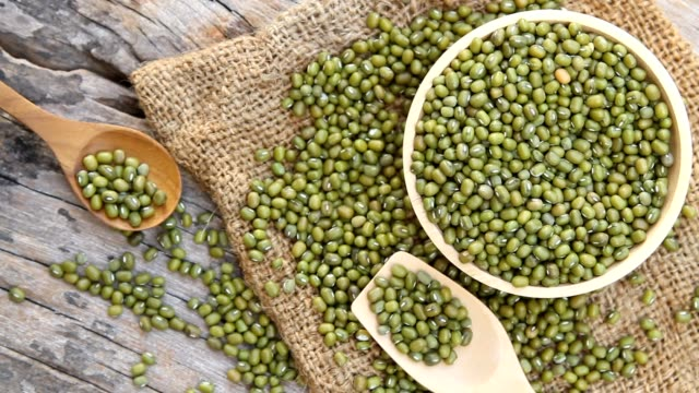 mung bean - green bean stock videos & royalty-free footage