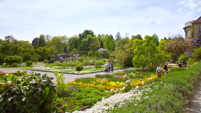 munich botanical garden wide shot of flower exhibition - botanical garden stock videos & royalty-free footage