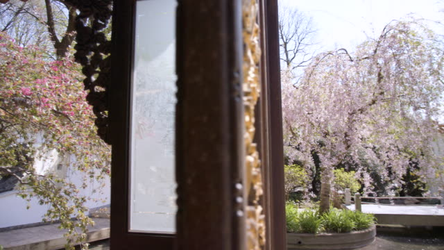 munich westpark pan from cherry tree to japanese pagoda inner yard with tree - pagoda stock videos & royalty-free footage