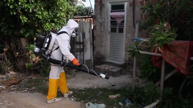 Municipal workers sprays chemicals in a residential area of Recife to combat the spread of the Zika virus on February 05 2016 in Recife Brazil