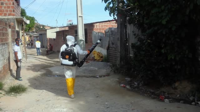 municipal workers sprays chemicals in a residential area of recife to combat the spread of the zika virus, on february 05, 2016 in recife, brazil. - virus zika video stock e b–roll