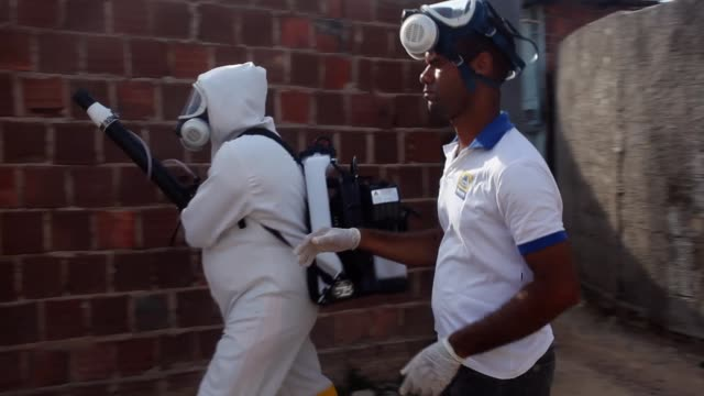 vidéos et rushes de municipal workers sprays chemicals in a residential area of recife to combat the spread of the zika virus, on february 05, 2016 in recife, brazil. - virus zika