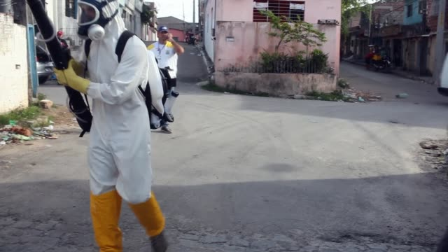 municipal workers sprays chemicals in a residential area of recife to combat the spread of the zika virus on february 05 2016 in recife brazil - epidemie stock-videos und b-roll-filmmaterial