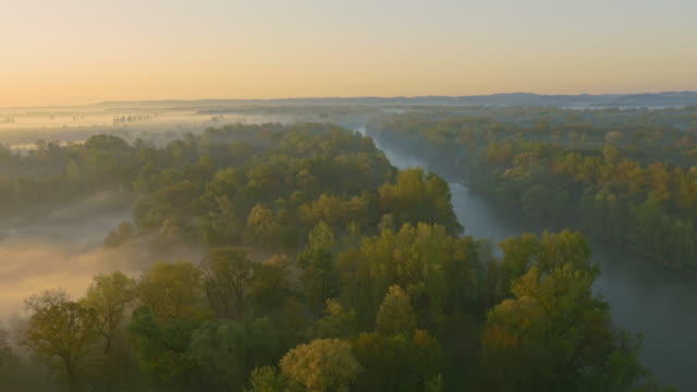 aerial mur river in the morning mist - woodland stock videos & royalty-free footage