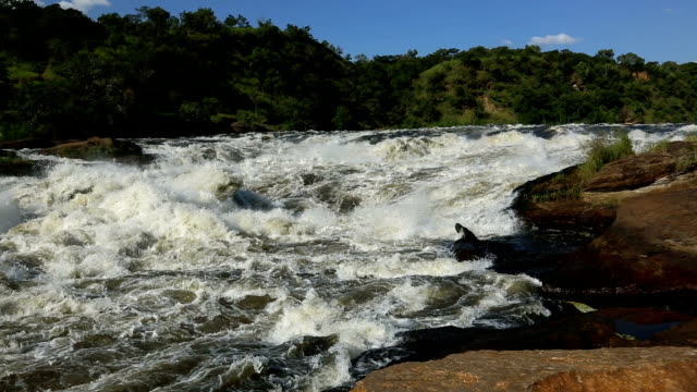 murchison falls 4 - rapid stock videos & royalty-free footage