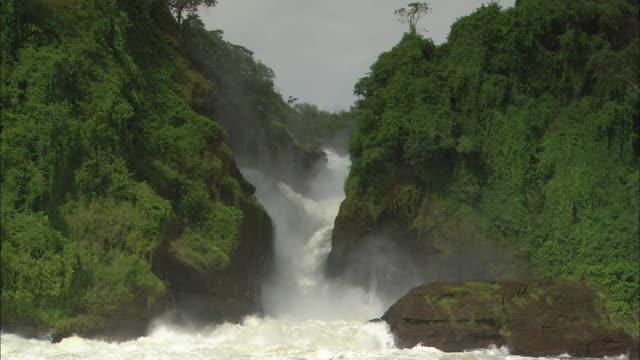 MS, ZO, WS, Murchison Falls, Murchison Falls National Park, Uganda