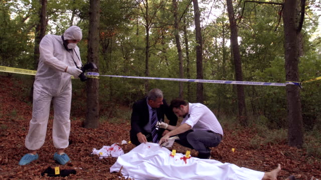 murder investigation 4k - criminal investigation stock videos & royalty-free footage