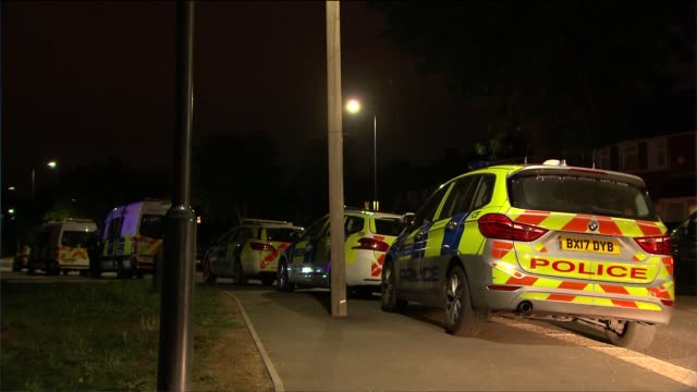 murder investigation launched after bodies of two women found in fryent country park in north london 5th / 6th june 2020 london wembley fryent... - murder stock videos & royalty-free footage