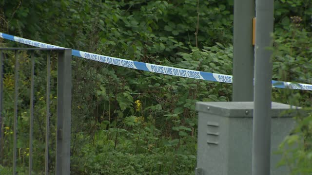 murder investigation launched after woman's body found by main road near guildford; england: surrey: guildford: ext gvs parked police car and police... - crime and murder stock videos & royalty-free footage