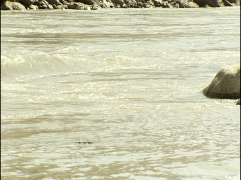 Murky water of Indus river