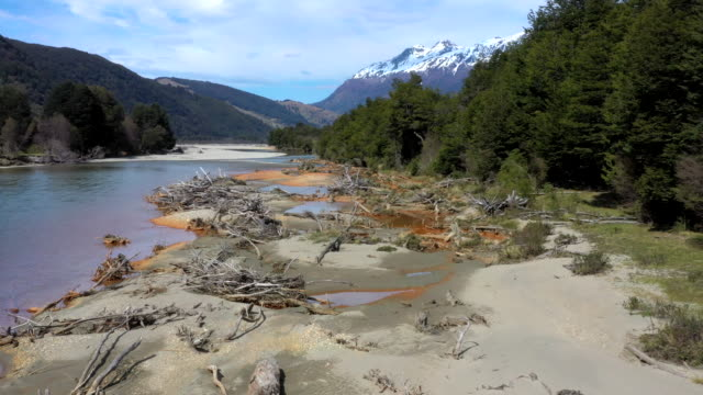 murta river valley, patagonia, chile - 死んでいる点の映像素材/bロール