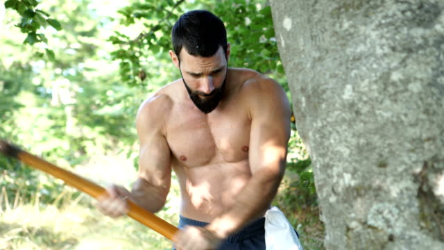 muscular lumberjack cutting tree - tagliaboschi video stock e b–roll